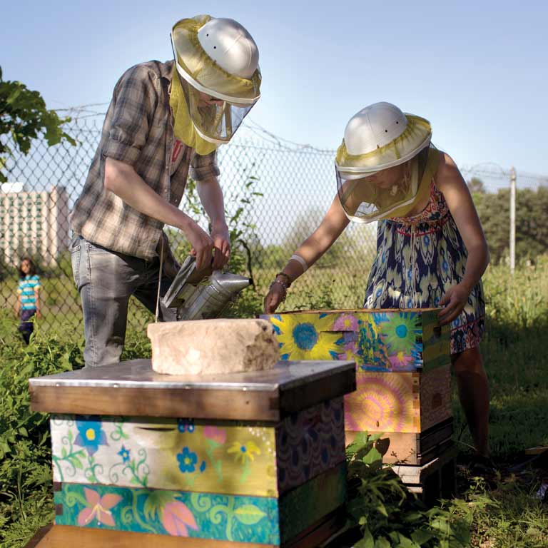 Two beekeepers work at a beehive.